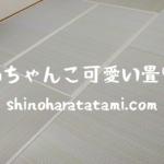 「ル・グランデ北久宝寺」にお住まいのお客様宅の畳の表替え〜